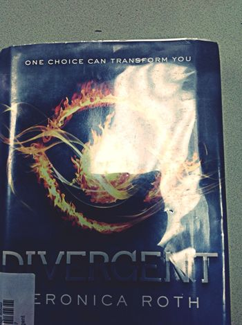 Best book ever! Dauntless