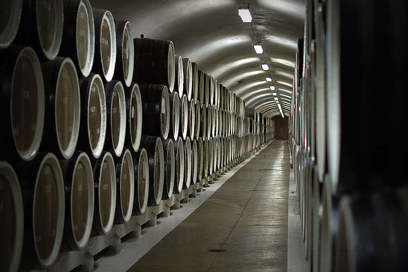 Cellar Everything In Its Place In A Row Mature Wine Narrow Perspective Wine Cask Wood