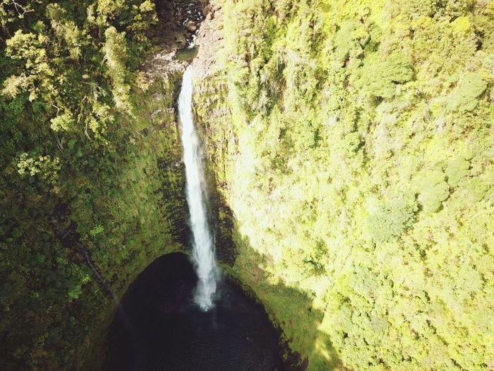 Akaka Falls DJI X Eyeem DJI Mavic Pro Waterfall Big Island Hawaii Water Nature Day Outdoors Beauty In Nature