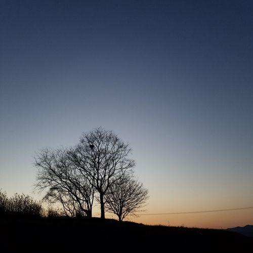 I live in … Sky Colors Tree Pm6:00 I Live In