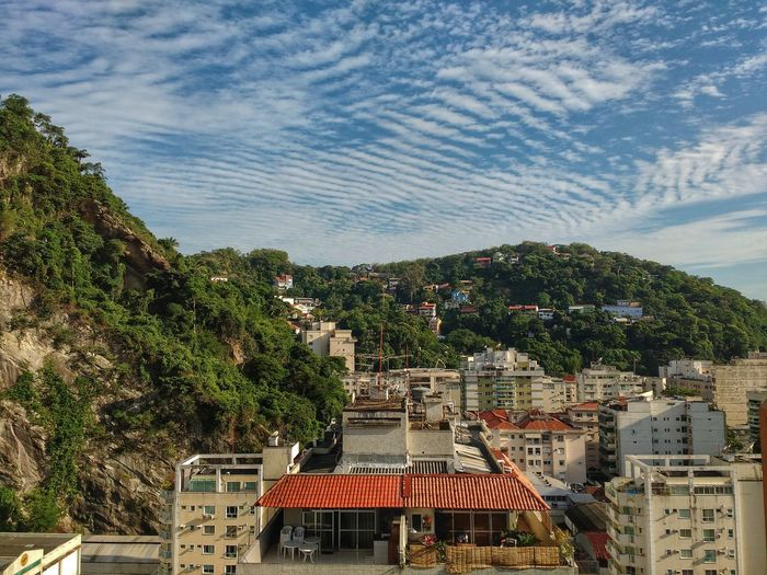 Mountain Forest Clouds Sky Tree Growth Cityscape Outdoors Day Nature No People Brazilian Scenics Tropical Botafogo Travel Destinations Palm Tree Backgrounds Houses Developing Country Third World Country Architecture Beauty In Nature Urban Skyline City