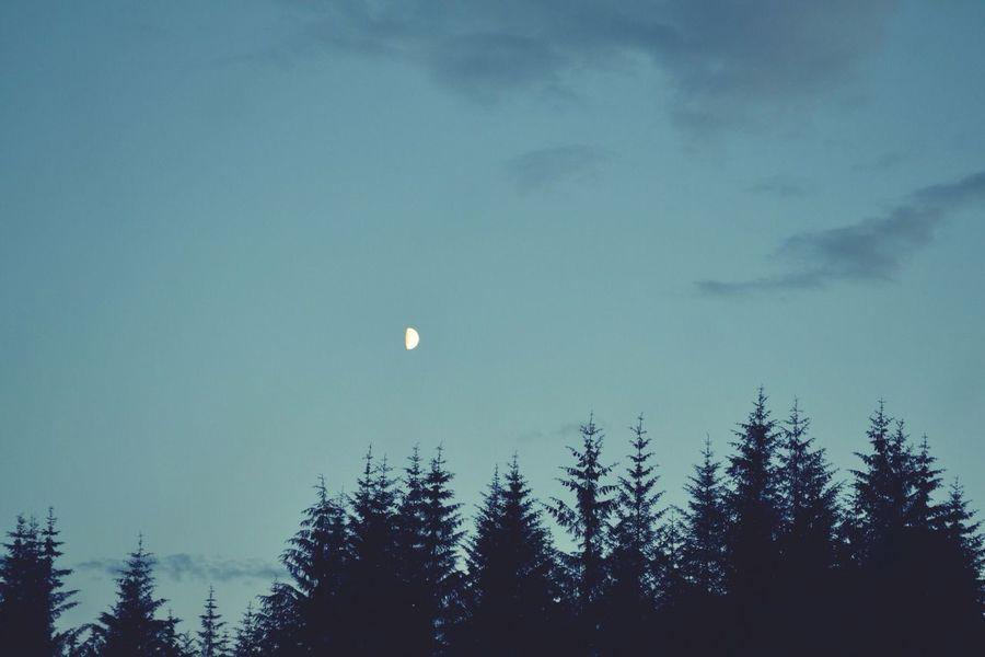 Moon Taking Photos Enjoying Life Beautiful