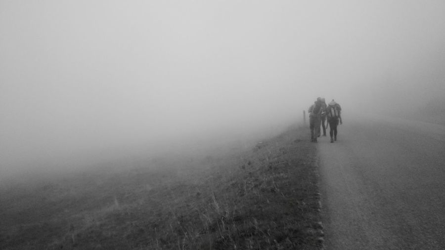 Foggy Lost In The Fog Walkers Wildwalkers Czech Republic Mountains Karkonosze Trekking In The Middle Of Nowhere Czech Border Silence Cold No Destination Grass Nature Fog Outdoors Beauty In Nature Field Tranquility Landscape Tree Tranquil Scene Rural Scene Growth
