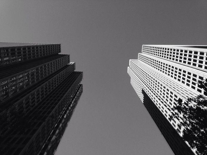 Financial district Blackandwhite Black And White Black & White Architecture Building San Francisco California City