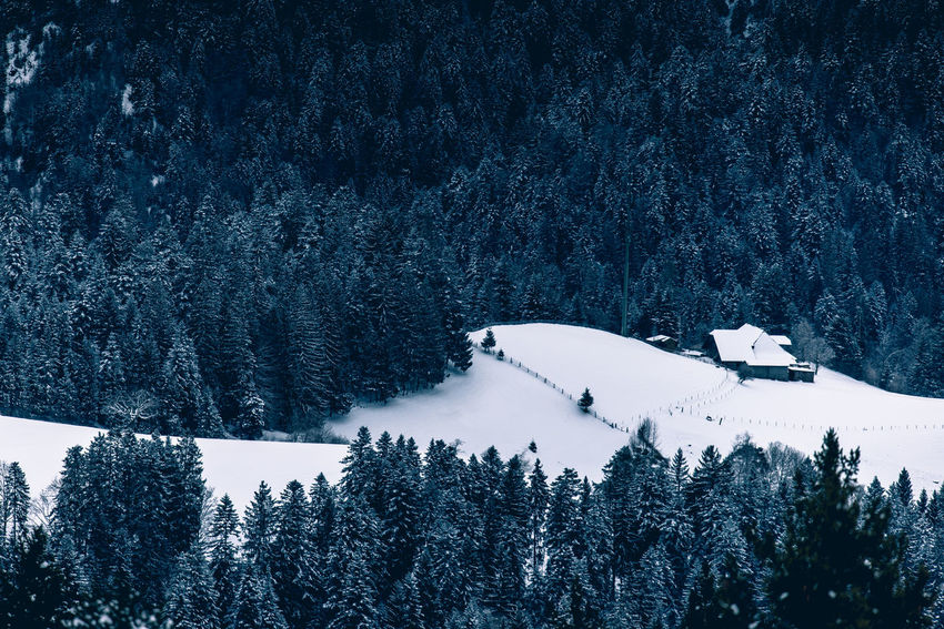Abgelegener Bauernhof im winterlichen Emmental Beauty In Nature Cold Temperature Day Forest Frozen Landscape Mountain Nature No People Outdoors Pine Tree Scenics Sky Snow Snowcapped Mountain Spruce Tree Tranquil Scene Tranquility Tree Weather Winter