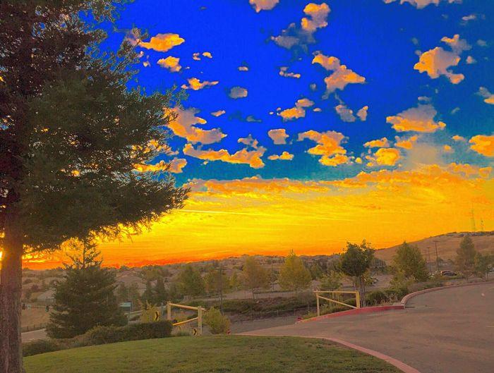 Lovely Weather EyeEmBestPics Hugging A Tree Sunrise Sunrise_Collection EyeEm Gallery Getting Inspired Nature Good Morning Sunshine