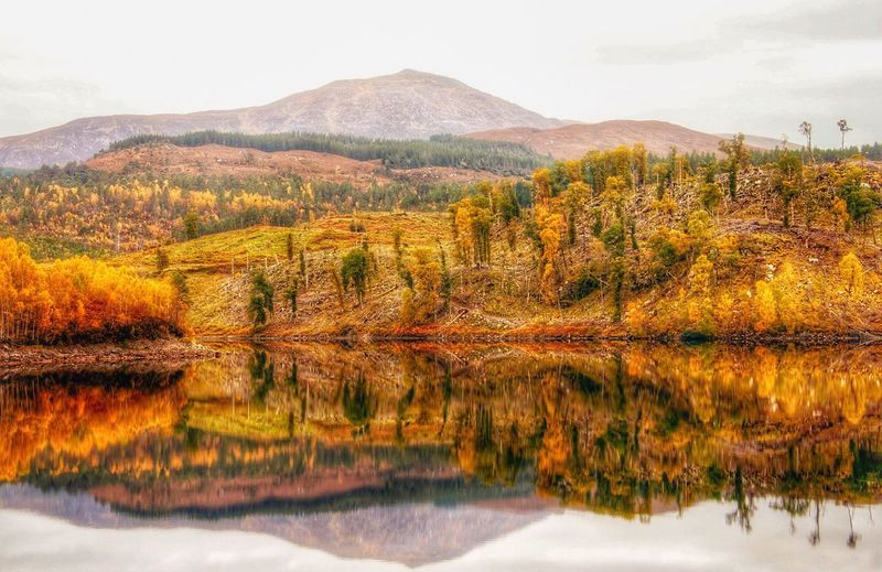 Trees and mountains reflecting in lake during autumn