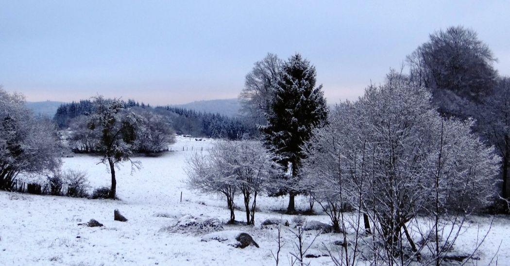 Landscape Snow Walking Limousin Promenade France