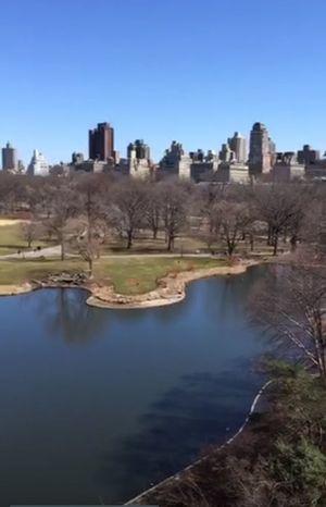 Trip around the world with Periscope New York