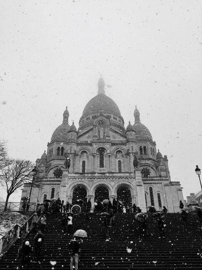 Snow Sacre