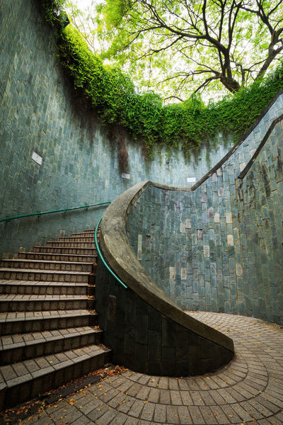 Fort Canning Park Green Color Singapore Stairs Tree Underground Underground Crossing Architecture Day Nature Park Spiral Tree Tunnel