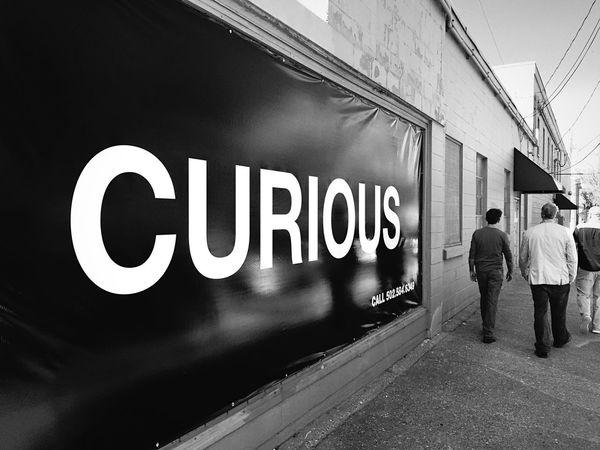 Curiosity Things Streetphotography Street Photography Streetphoto_bw Walking Around Blackandwhite Black And White Black & White Street Streetart