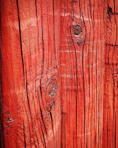 Wood Woodenpost Posts Paintedwood Orange 9Vaga_ColorOrange9 Texture Grain Pocket_colors Rainbow Wall Tv_simplicity Simplicity Paradise_minimal Nothingisordinary Minimal_mood Minimal_int Pocket_minimal Minimalgram 9vaga_dailytheme9 Fromyourprospective_44 Wooden_hue Wooden_hue_liketoknow Tvc_uc_orange Wooden_hue_ro Wmm_brown
