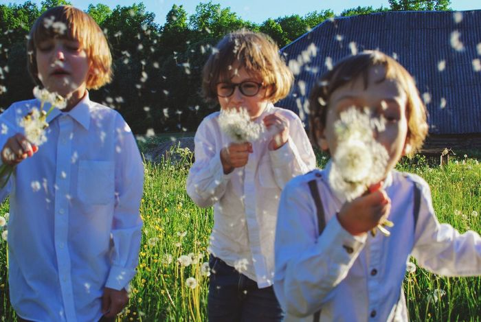 Child Children Only Togetherness Childhood Outdoors Boys Happiness Fun Summer Day Friendship Smiling Males  Grass Nature Meadow Dandelion Dandelion Seeds Gently Float Away.. Leasure Activity Leasure Frolicking Joy Joyful Moments Live For The Story The Great Outdoors - 2017 EyeEm Awards Sommergefühle