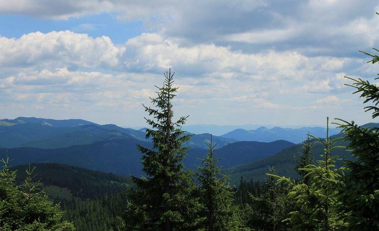 Hoverla Mounthoverla Mountains Ukraine Carpathians Vorokhta Nature Landscape Україна Говерла Ворохта гори