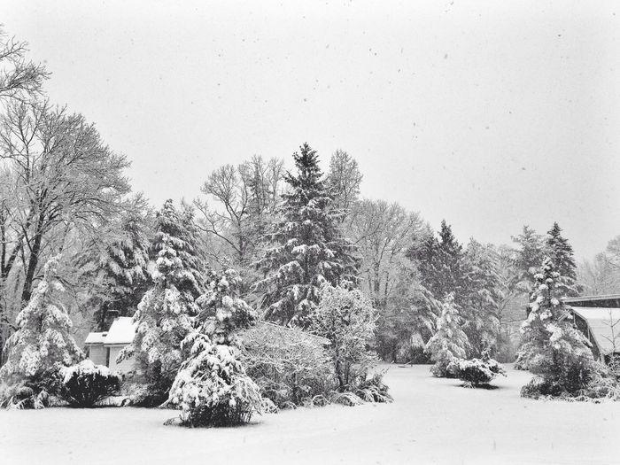 Blackandwhite EyeEm New Jersey Snow