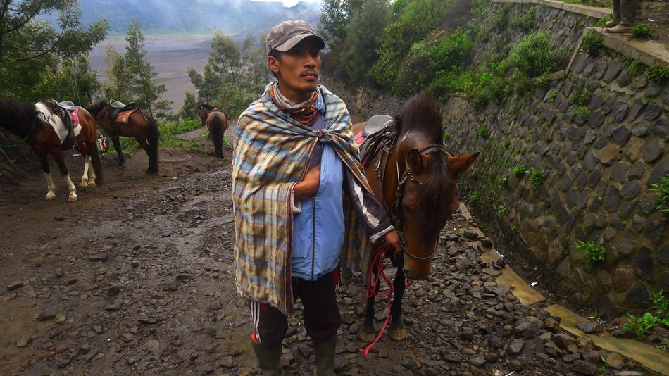 Casual Clothing Day Full Length Horse Photography  Horse Riding Landscape Leisure Activity Lifestyles Mammal Man And Horse Mount Bromo Mountain Mountain Horse Nature Outdoors Portrait Tourism Tourist Attraction  Up The Hill Vacations