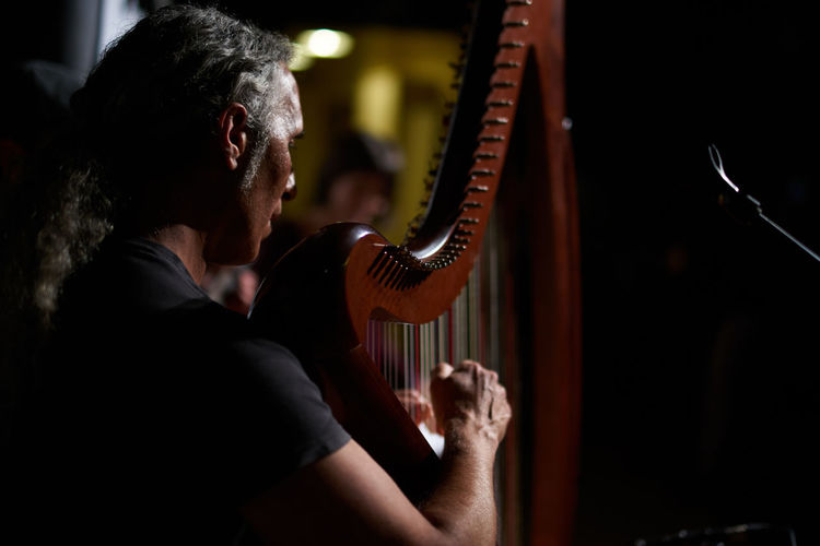 Arpa Concert Music Musician Sonyimages Traditional Music