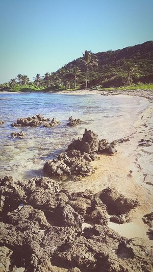 Utila ♡ ISLAS DE LA BAHIA Honduras First Eyeem Photo Pumpkinhill
