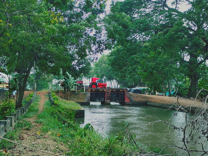 A village scene Tree Water Growth Lifestyles Nature Green Color Vacations Water Slide River Lock River Tractor Bridge Villa Village Village Life Village View Village Photography Village Scene Landscape Vehicle