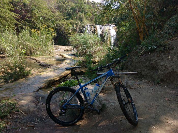 Ciclismo cascada Turistico Chiapas Cascada Rio Paisaje Ciclismo Suntour Giant Bikes