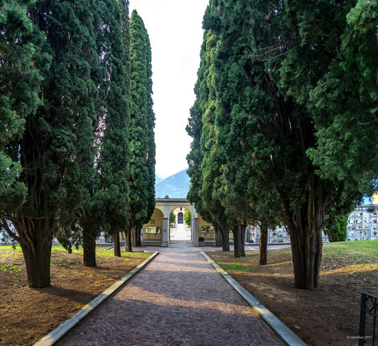 The road for the last journey... Last Journey Perspective Architecture Beauty In Nature Building Exterior Built Structure Cementry Day Green Color Nature No People Outdoors Scenics Sky Tree