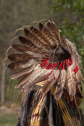 Man Wearing North American Indian Headdress