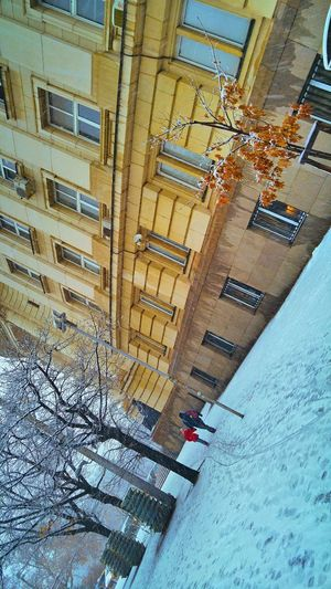 Architecture Day Built Structure Building Exterior Outdoors City Snowy Days... Abstract Cold Temperature Winter Time Winter Snow ❄ Snowing Winter 2017 Close-up Backgrounds Colors Snow City Sofia University Architecture Winter Nature Full Frame Colorful View Snow ❄