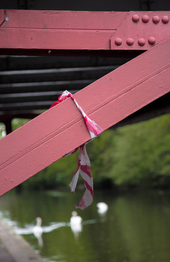 Close-up of pink umbrella hanging on rope against lake