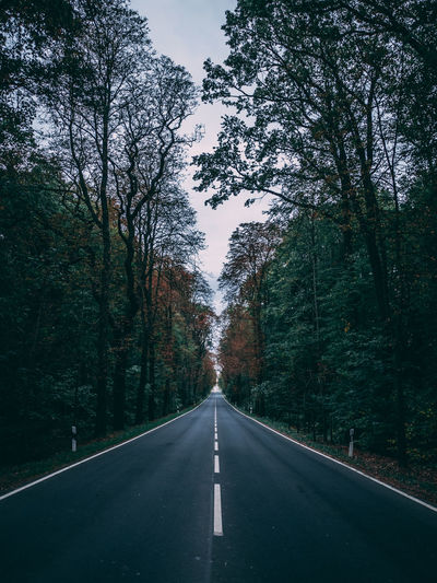 Lines Country Country Road Day Diminishing Perspective Direction Dividing Line Forest Growth Land Long Marking Nature No People Outdoors Plant Road Road Marking Sign Symbol The Way Forward Transportation Tree vanishing point EyeEmNewHere A New Beginning Capture Tomorrow Moments Of Happiness