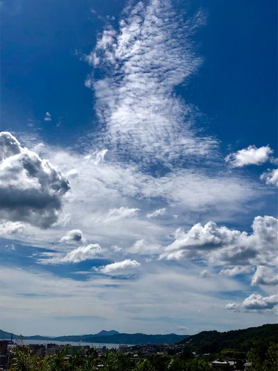 A Beautiful Cloudscape. (180911-181013) Sky Cloud - Sky Beauty In Nature Blue Scenics - Nature Nature No People Environment Landscape Tree Plant City Idyllic Tranquility Tranquil Scene Day Outdoors Low Angle View