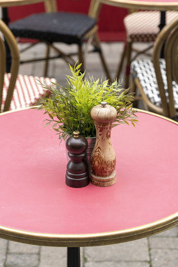 Salt grinder and pepper mill on round pink table Condiments  Feature Salt And Pepper Arrangement Business Centrepiece Chair Close-up Focus On Foreground Furniture Grinder Mill No People Pepper Mill Pink Color Plant Potted Plant Restaurant Round Salt Mill Seat Setting Table Vase Wood - Material