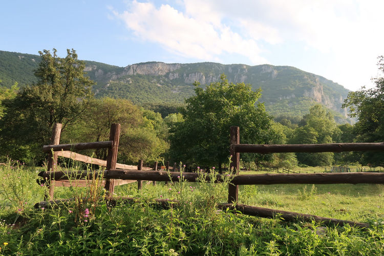 Wooden fence in a rural area Green Color Rural Wooden Fence Barrier Boundary Countryside Environment Fence Field Landscape Mountain Mountain Range Nature No People Outdoors Plant Rural Scene Scenics - Nature Sky Tranquil Scene Tranquility Tree