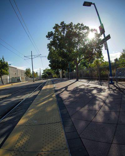 Railroad track passing through trees