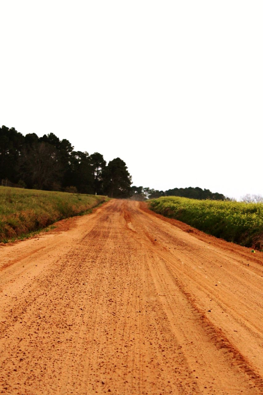 agriculture, road, field, landscape, tree, rural scene, the way forward, no people, tire track, nature, transportation, clear sky, outdoors, day, sky, plowed field