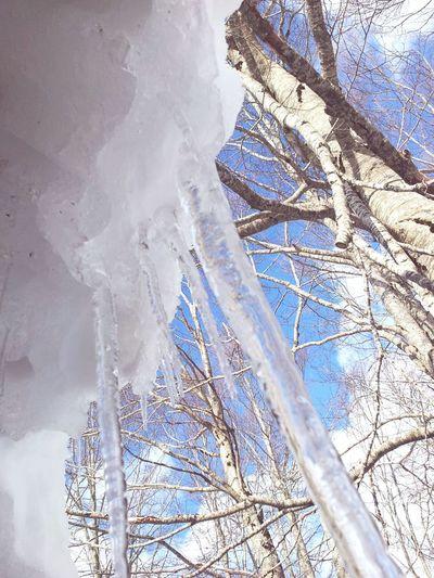 Samuele Relaxing Ghiaccio Ice Neve Snow ❄ Snow