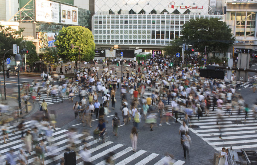 Tokyo Shibuya Crossing Architecture ASIA Building Exterior City City Life Crow Crowd Japan Large Group Of People Men Metropolis Outdoors People Person Shibuya Crossing Street Tokyo Walking