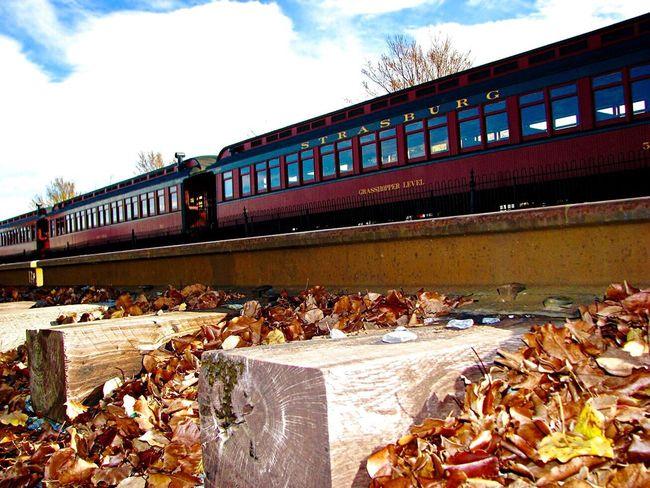 Transportation Train - Vehicle On The Move Train Train Tracks Fall Fall Beauty Fall Leaves Autumn Autumn Leaves Autumn Colors