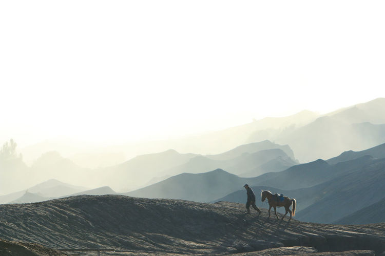 View of horse on mountain range against sky