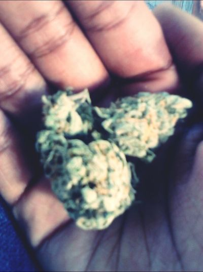 - this loud got me Sleepy but I'm too high ta go ta Sleep - Webbie #Vampin #TeamLoudPack #NoSleep Blowin Loud
