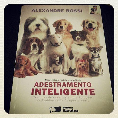 Leitura matinal para aprender a educar o cãozinho, Rocky. Adestrador Worldoflabs LabradorLove