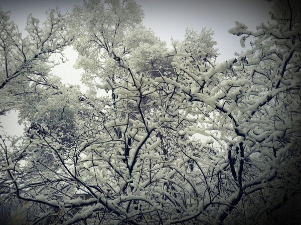 Taking Photos Hello World Snow ❄ Beautiful Nature Ilikeit ♥