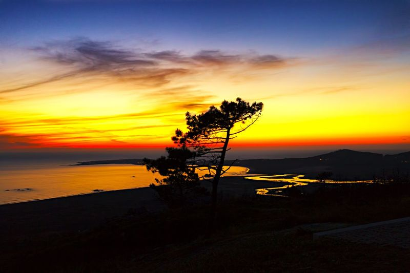 Beauty In Nature Sunset Sky Sea Silhouette Nature Horizon Over Water Tranquility No People Tree Water Beach Outdoors Landscape Champa Galifornia Dramatic Sky Seascape Amazing Sunset Red Sky Pedra Da Ra ribeira