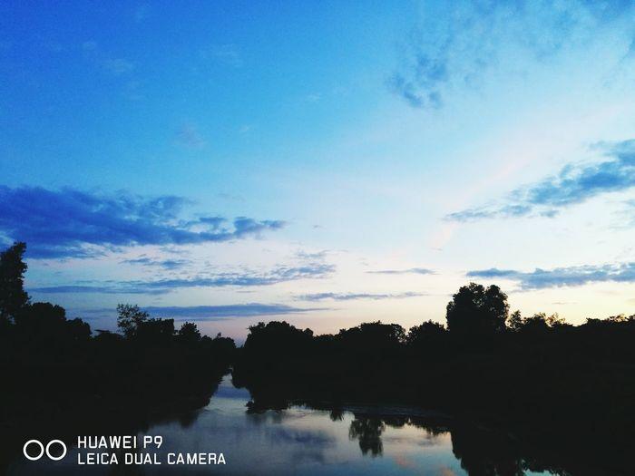Tree Tranquility Sky Cloud - Sky Outdoors Nature Blue