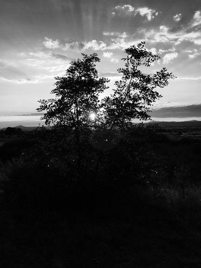 Cloudporn Newmexico Sunset Beautiful Nature Blackandwhite