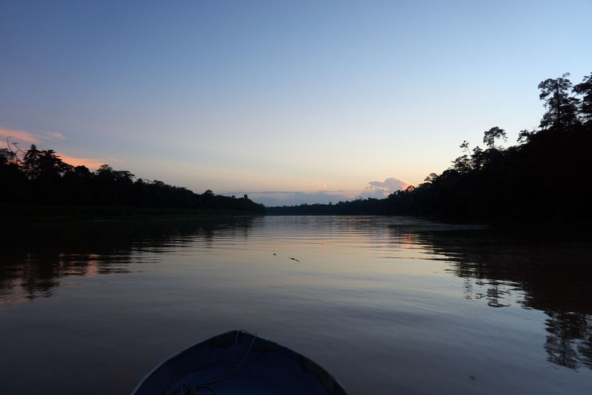 Beauty In Nature By Boat Day Jungle Jungle River Lake Nature Night Falling No People Outdoors River Scenics Sky Tranquil Scene Tranquility Tree Water