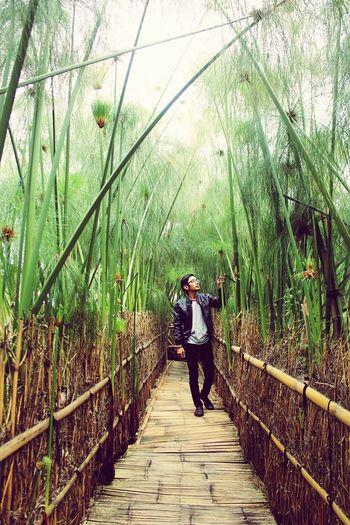 """""""Akan datang pada manusia suatu zaman, orang yang berpegang teguh pada agamanya seperti orang yang memegang bara api"""" (HR. Tirmidzi) Bamboo - Plant Nature Beauty In Nature Outdoors Real People One Person Day Lembang, West Java Bandung, West Java Fsp379 First Eyeem Photo"""