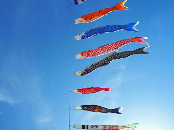 Carp Streamer Blowing In Wind
