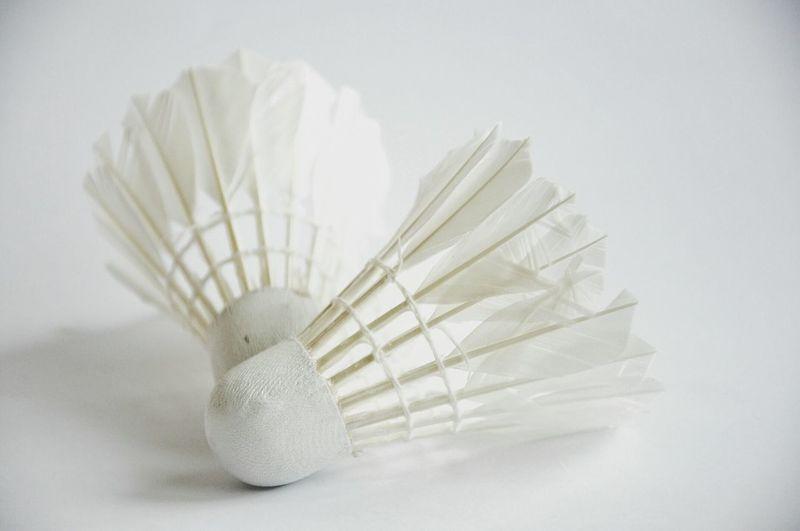 White Album White On White WhiteCollection White Background Smart Simplicity Simple Shuttlecock Badminton Badminton Lover