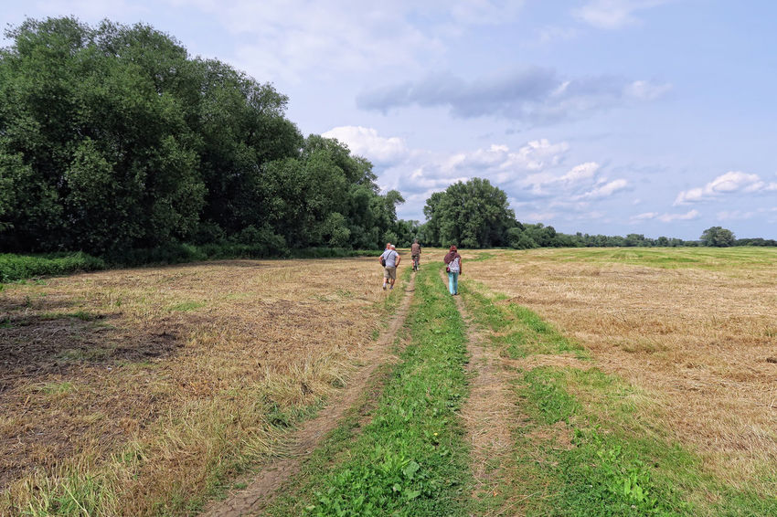 Tangermuende, Saxony-Anhalt / GERMANY June 05 2017: People walking along a path leading through Meadows of Elbe river. Saxony-Anhalt (Germany) Agriculture Cloud - Sky Day Elbe Elbe River Elberiver Field Grass Green Color Landscape Meadow Nature Outdoors Path People Real People Rural Scene Saxony Anhalt Saxonyanhalt Sky Tangermünde Togetherness Tranquility Tree Walking